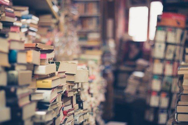 Des montagnes de livres